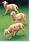 7.5 Inch Scale White Sheep Set of 3 by Fontanini